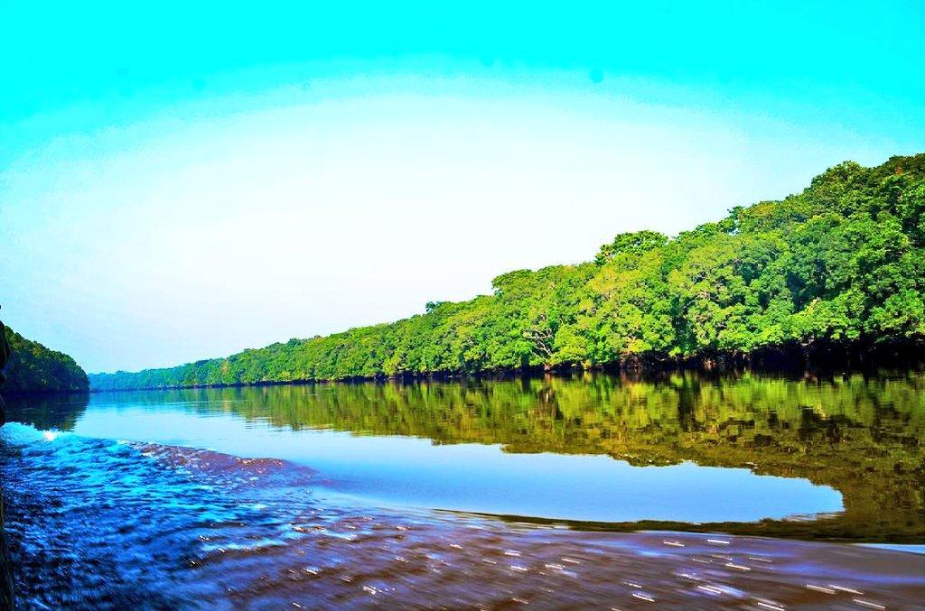 """Azzüre Nature on Twitter: """"Cap sur la rivière Lomami. Cette ..."""
