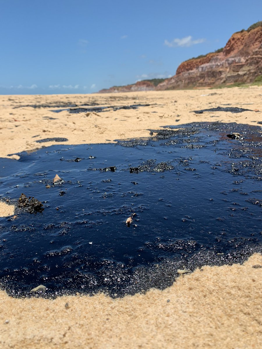NORTHEAST BRAZIL OIL SPILL: 200: Number of different locations with crude oil in ocean and/or on beach. (confirmed locations. Probably more not recorded yet) 77: Number of cities that have seen oil on beaches. 9: Number of states effected.