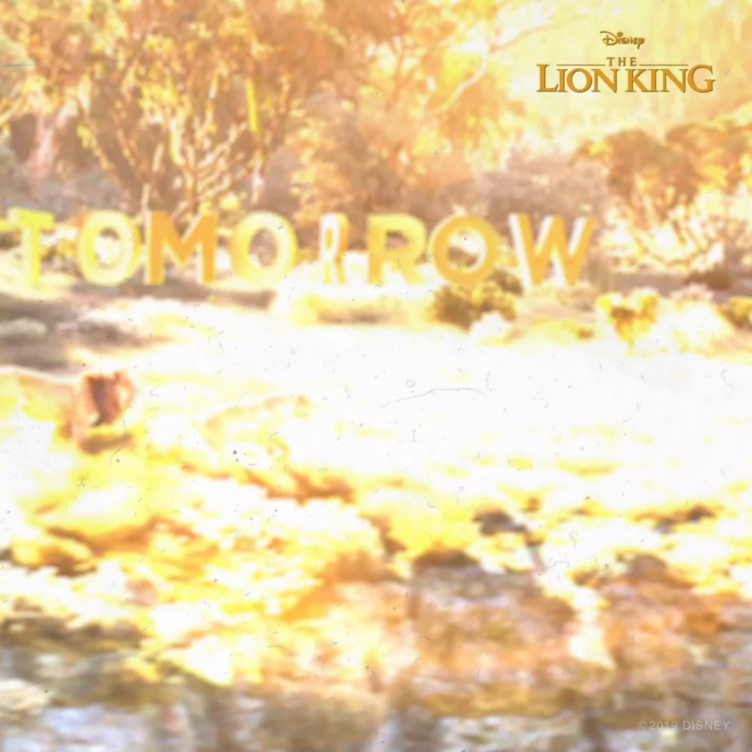The world for once in perfect harmony. Bring home Disneys #TheLionKing on Blu-ray TOMORROW: di.sn/6000ECcxA