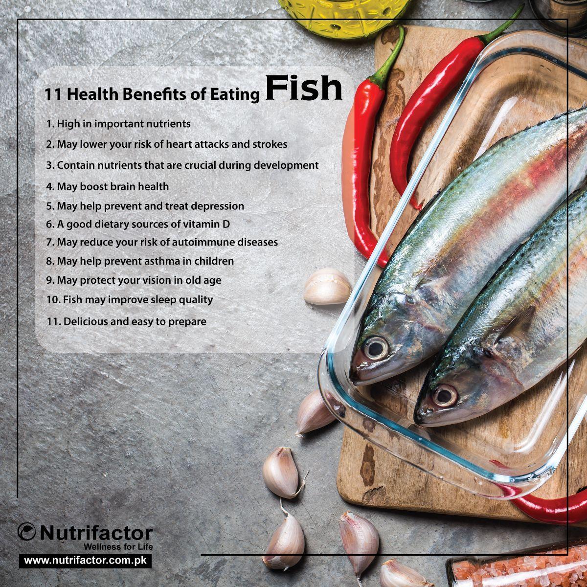 9 Cara Mudah Membedakan Ikan Segar Dan Tidak