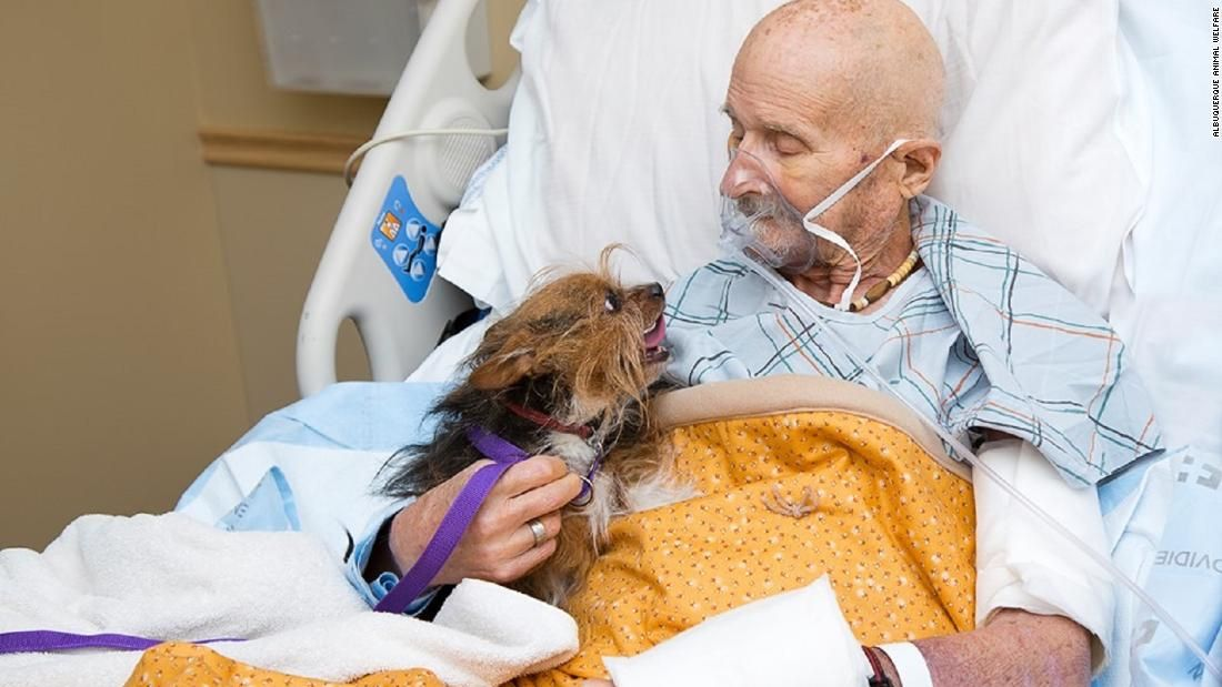 A Vietnam veteran in hospice care got to see his beloved dog for the last time cnn.it/2VZ61Q2