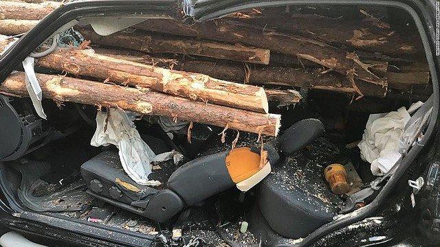 【奇跡】材木を積んだトラックに車追突、運転手は無事 米車の運転手は追突した際に落とした物を拾おうとシートを倒していたことで、座席と材木の間にできた空間に頭がおさまっていたそう。