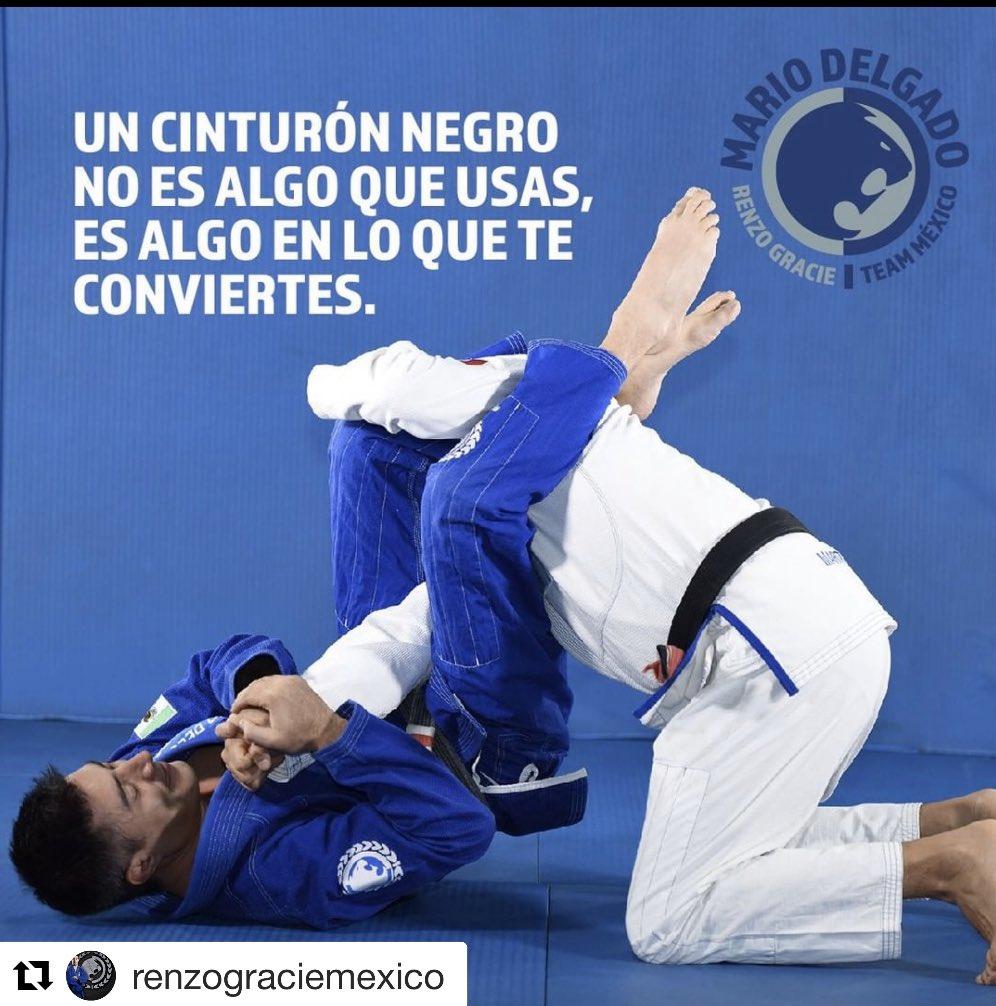 http://Renzograciemexico.com