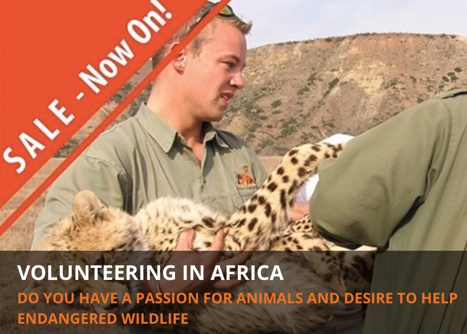 SALE Are you looking for conservation volunteer work in Africa? Wanting to work up close with some amazing animals and make a valuable contribution to wildlife conservation initiatives?pic.twitter.com/oH2vKclyJV