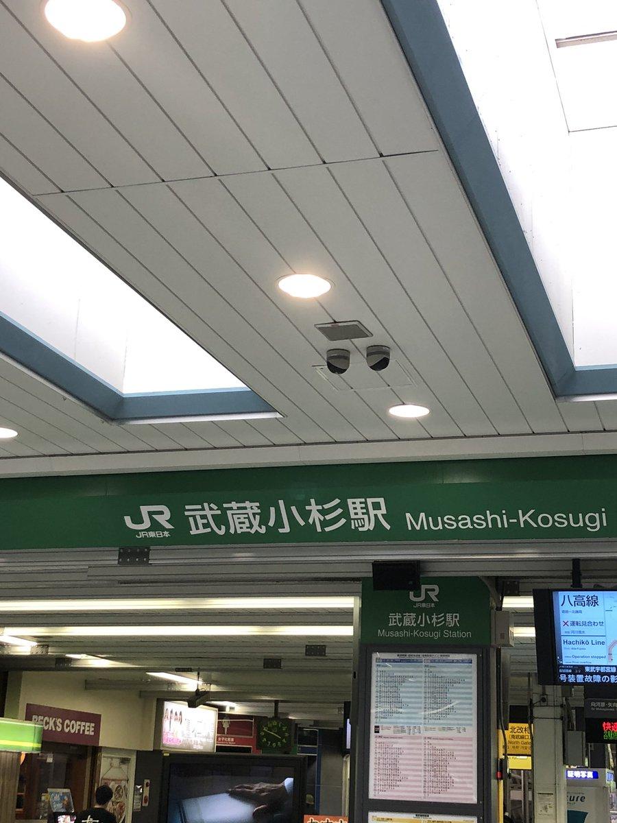 小杉 ウンコ 武蔵