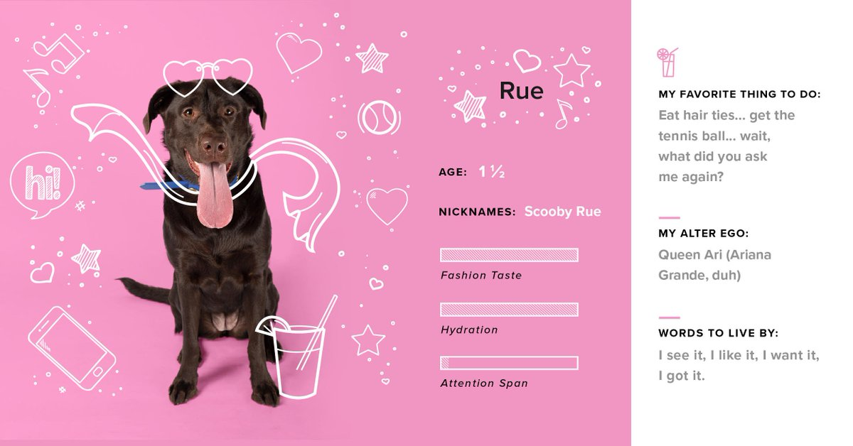 Our next #DogsofTG is our boo, Rue. 😍