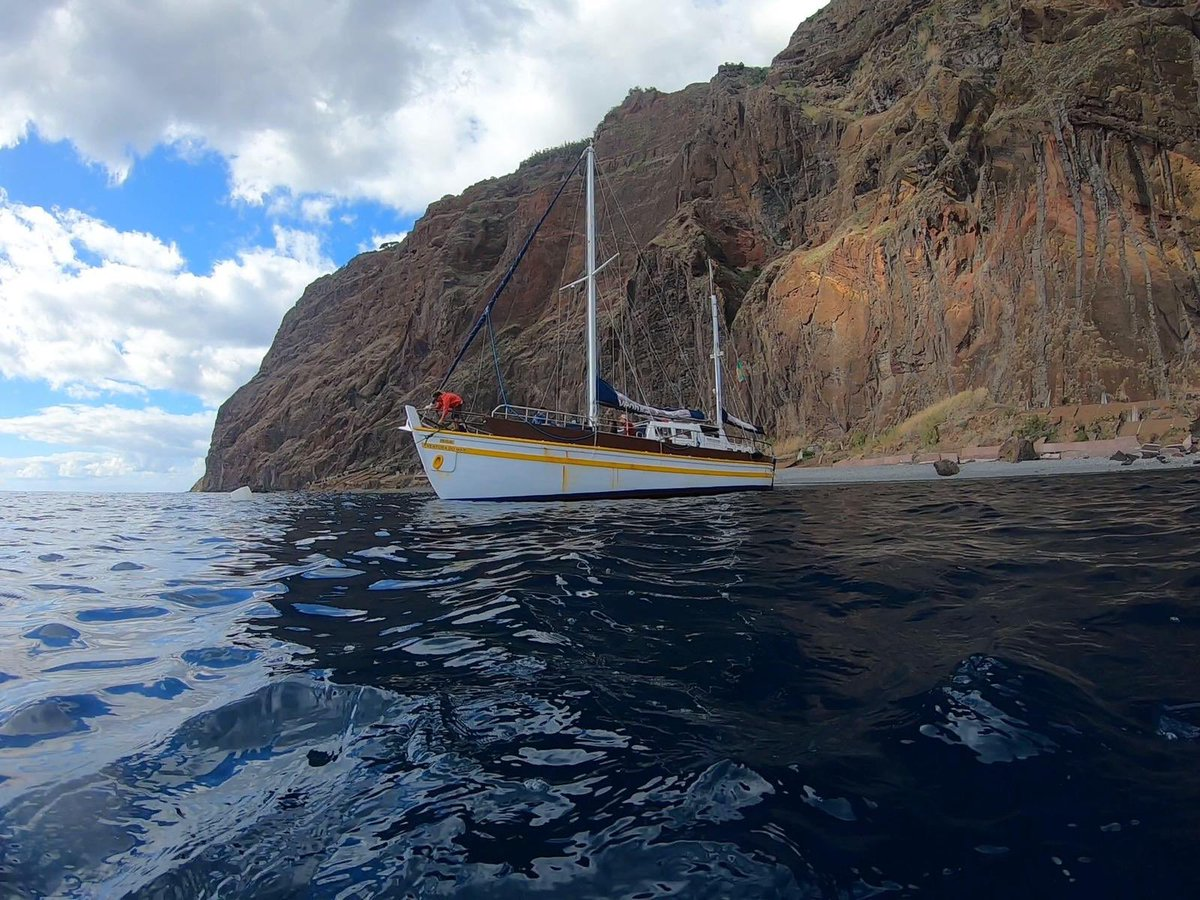 Madeira Day 3. Run, sail, dolphin spotting, swim, eat, drink, sleep! 💙