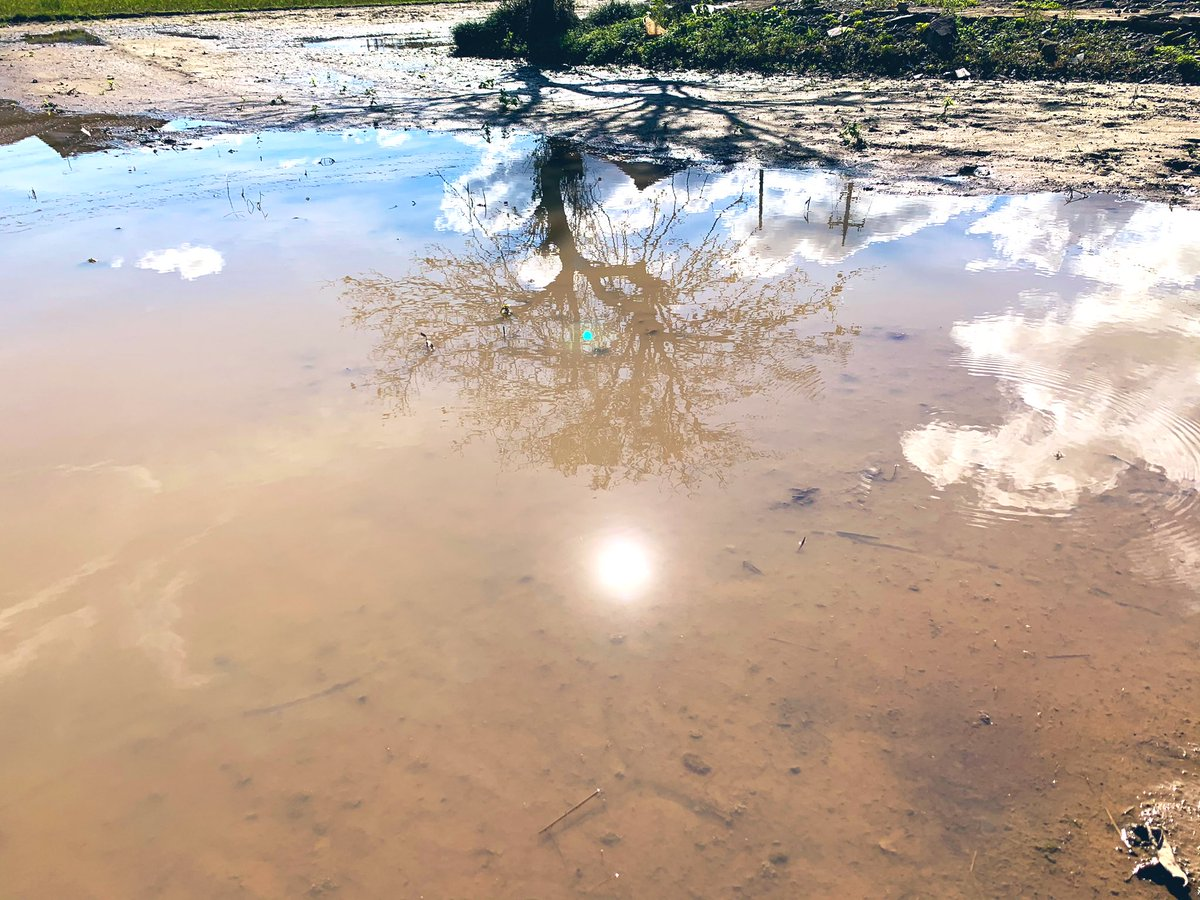 今日は被災地へお手伝いに伺いました。午前は工場から流されたコンテナを軽トラ部隊で集落一帯を探し回収。田畑はまだ手付かず。昼に小屋を一棟解体。ヘルメットは必需品。午後は特に被害が大きかった川の近くの集落を状況確認。持ち場に戻り散乱した稲藁の掃除。最後は泥だらけのコンテナ洗浄で〆。