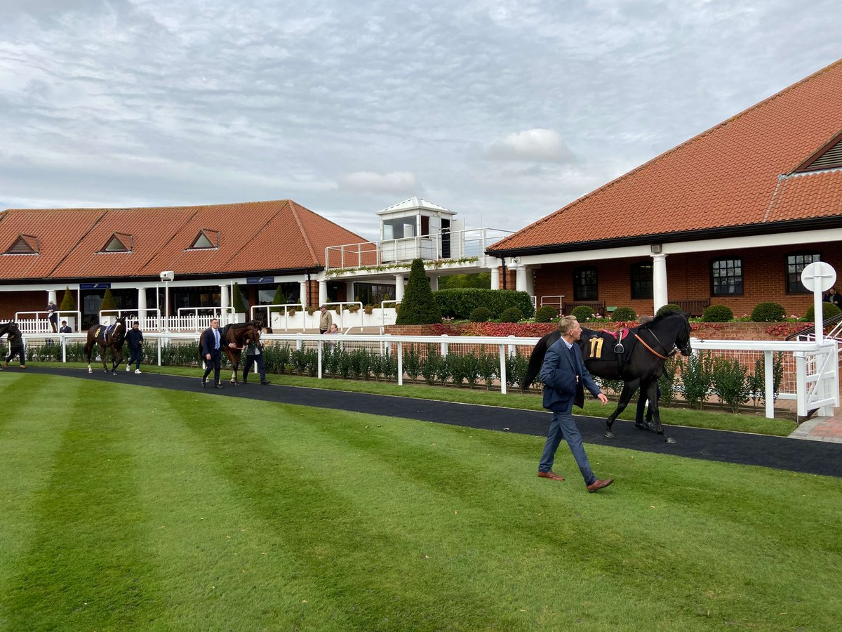Luke from our #Newmarket office visited the Newmarket Races yesterday to attend the #NewmarketBID event.  Thank you @LoveNewmarket and @TheJockeyClub for your hospitality. Fortunately, the rain held out! <br>http://pic.twitter.com/F5OU47rinL