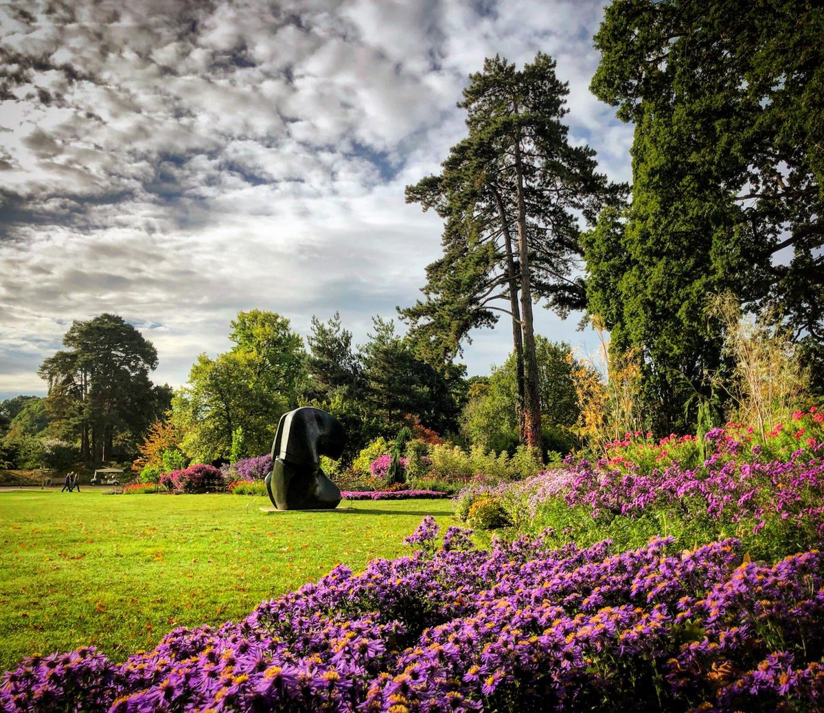 We have an exciting vacancy on our Herbaceous curatorial team @RHSWisley if you'd like to be part of something special and you are passionate about horticulture please take a look at our jobs page and get in touch rhs.org.uk/about-the-rhs/… #hortjobs #horticulturejobs #hortcareers