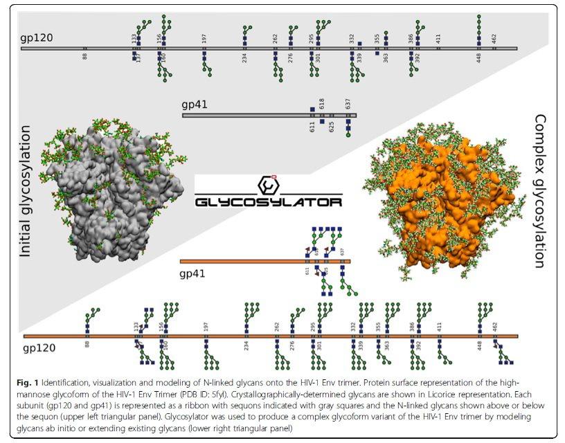 Glycosylator: a Python framework for the rapid modeling of glycans https://t.co/iv9EEaf1o2  #glycotime https://t.co/u1yIhKSPM2