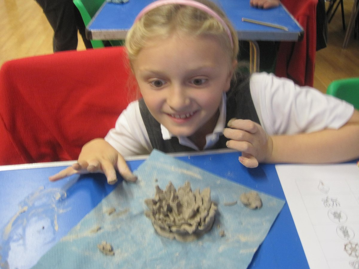 Sycamore Creating Their Lotus Flowers