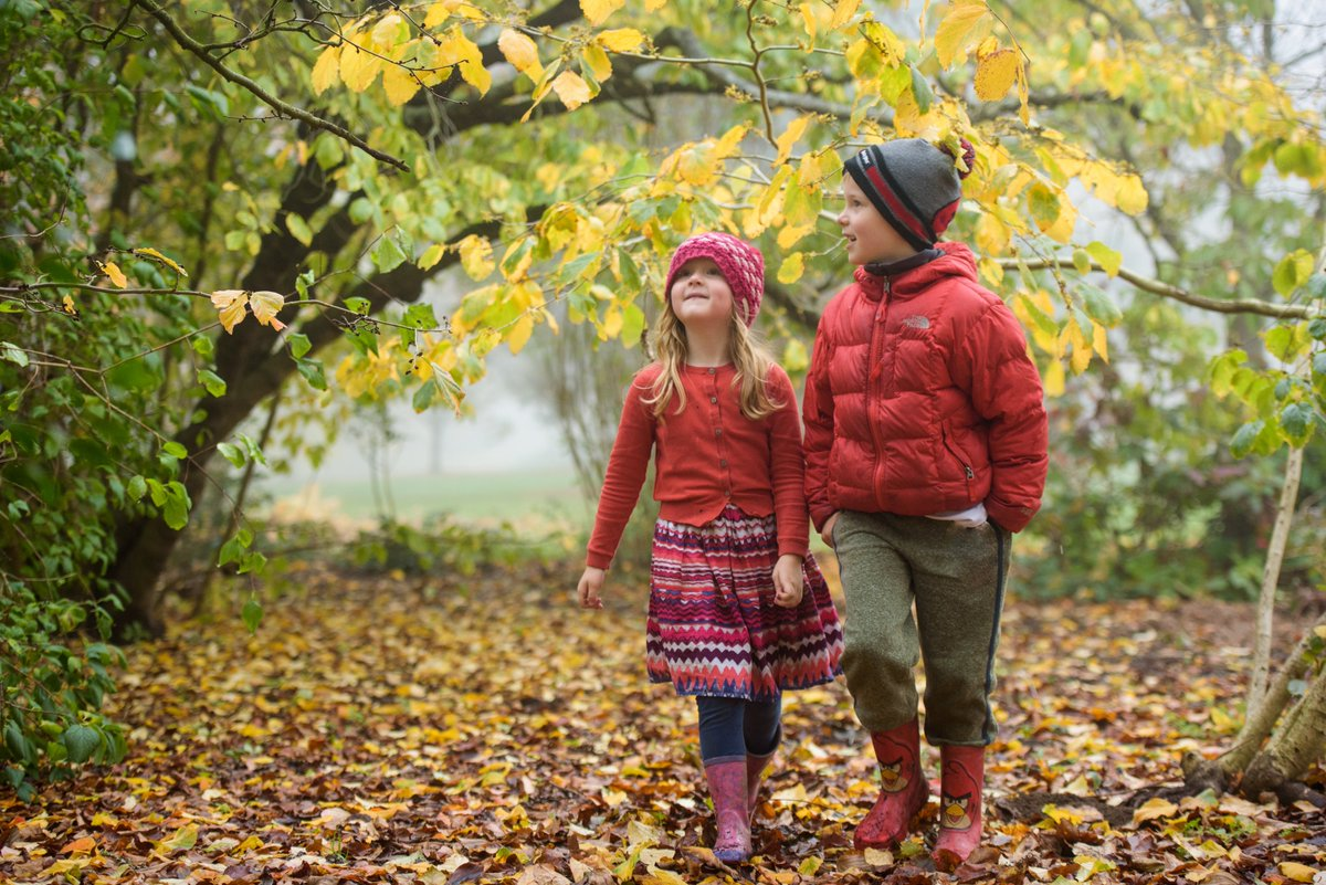 Our Awesome Autumn half term fun starts here at Wisley tomorrow (26 Oct-3 Nov). Join us for a garden adventure trail, craft activities, gardening workshops, puppet shows, and guided walks to discover hidden minibeasts around the Garden: rhs.org.uk/gardens/wisley…