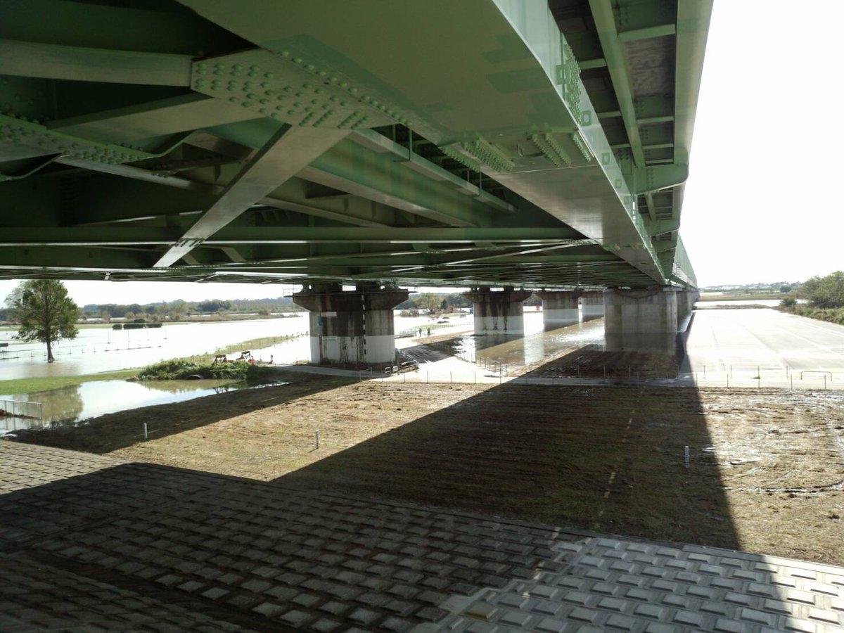 利根川 氾濫 ツイッター