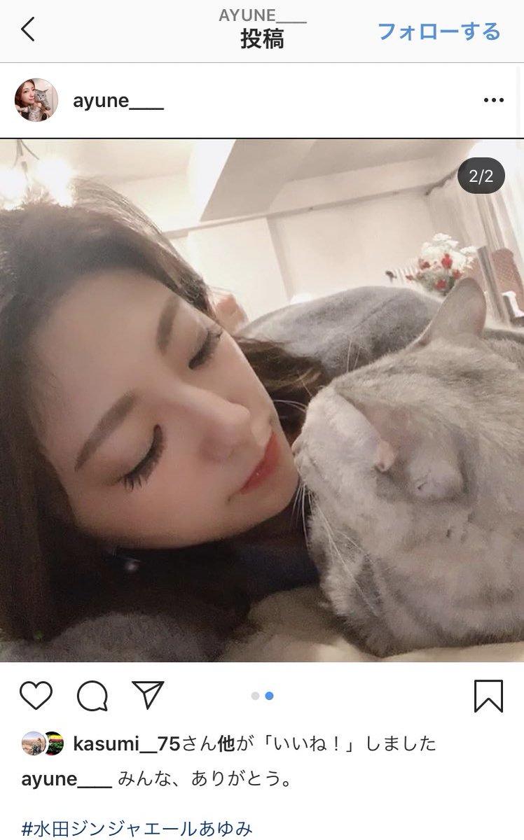 水田あゆみ hashtag on Twitter