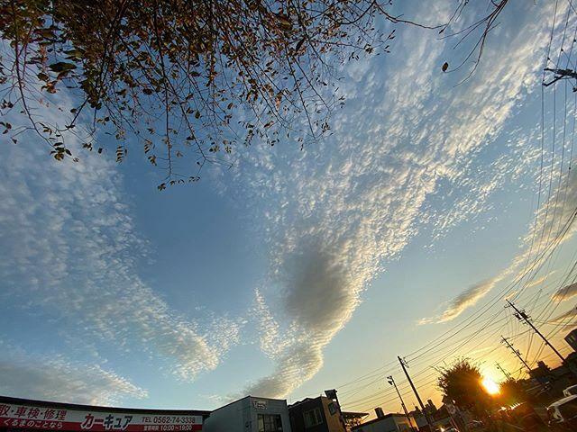#広角 過ぎて、背後の樹まで映り込んじゃった .  #今日の陽はさようなら #夕陽 #夕日 #夕焼け #夕焼 #夕空 #sunset #太陽 #sun #イマソラ #いまそら #ノンフィルター #ノーフィルター #青空 #あおぞら #bluesky #空 #そら #sky #雲 #くも #cloud #clouds
