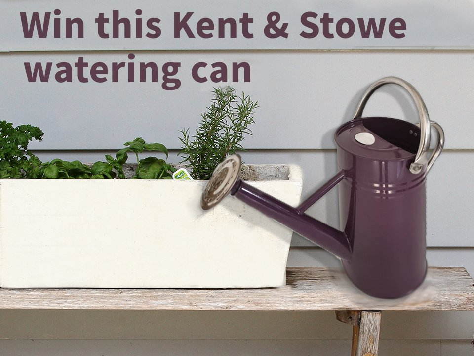 #Follow Me, #RT & #Tag a friend for the chance to win this @Kent_and_Stowe watering can.  Closes 18/11/19 at 11:59PM UK Residents Only T&C's Apply  #LoveYourGarden #WinItWednesday #FreebieFriday <br>http://pic.twitter.com/9ziEwUnGec