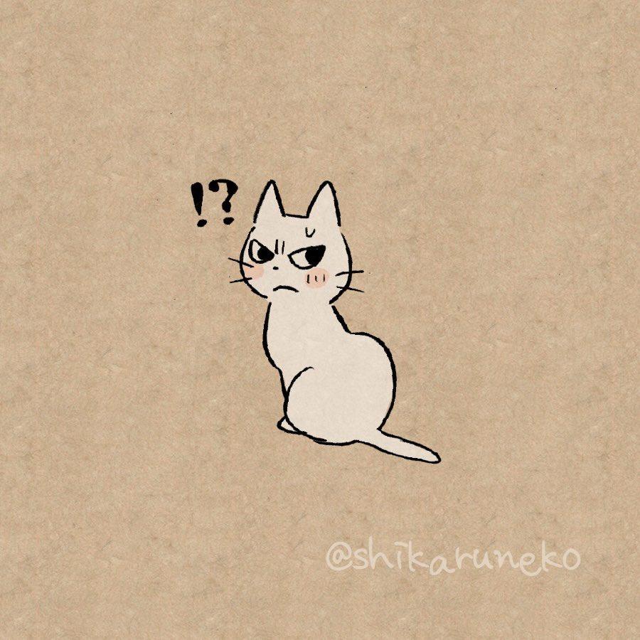 RT @shikaruneko: #名前の最初をしに変えると超かわいい  しかるねこ https://t.co/LNOtoLXVIK