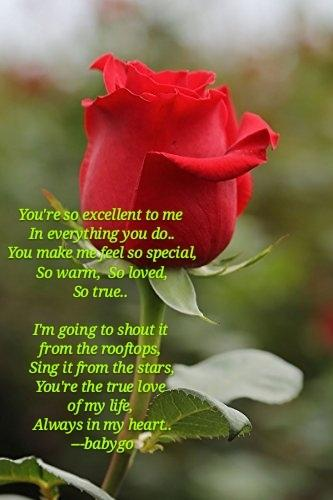 You're so excellent to me  In everything you do.. You make me feel so special, So warm, So loved, So true..   I'm going to shout it  from the rooftops,  Sing it from the stars, You're the true love  of my life,  Always in my heart.. -- babygo <br>http://pic.twitter.com/1W2PmYCvTP