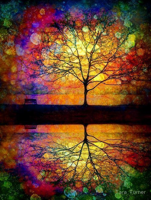 Someone is sitting in the shade today because someone planted a tree a long time ago. -Warren Buffett #amwriting #Art Tara Turner