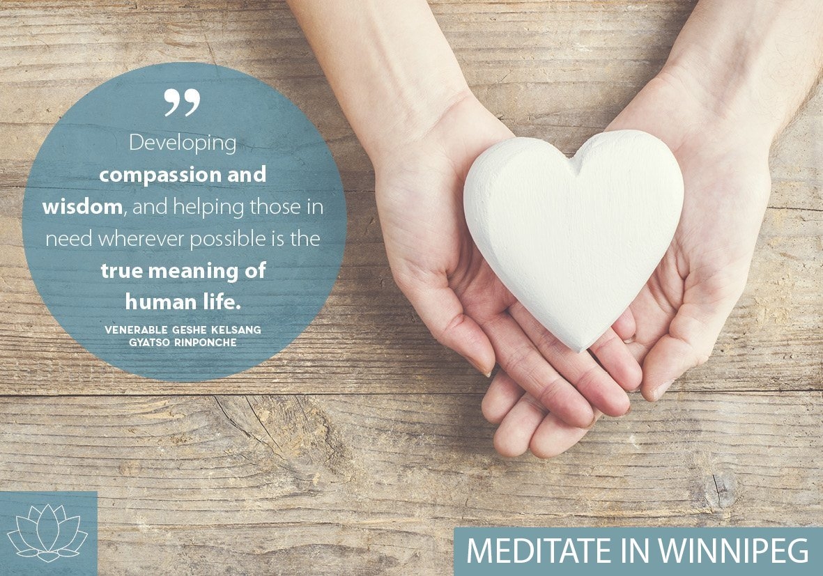 Developing compassion and wisdom, and helping those in need whenever possible is the true meaning of human life.#kadampa #meditation #winnipeg #westendwpg #wisdom #compassion #truemeaning #humanlife