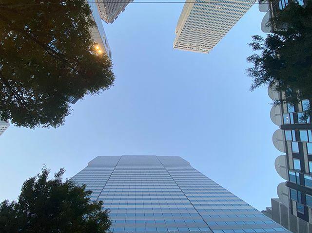 今日もそろそろ終わっちゃう  #ビル #木 #樹 #Building #Buildings #イマソラ #いまそら #ノンフィルター #ノーフィルター #空 #そら #sky