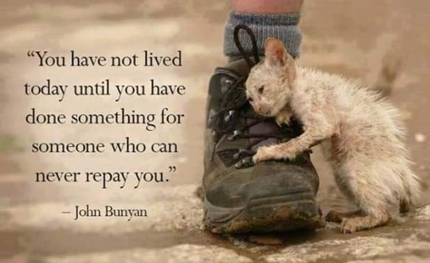 My quote of the day from John Bunyan: You have not lived today until you have done something for someone who can never repay you.