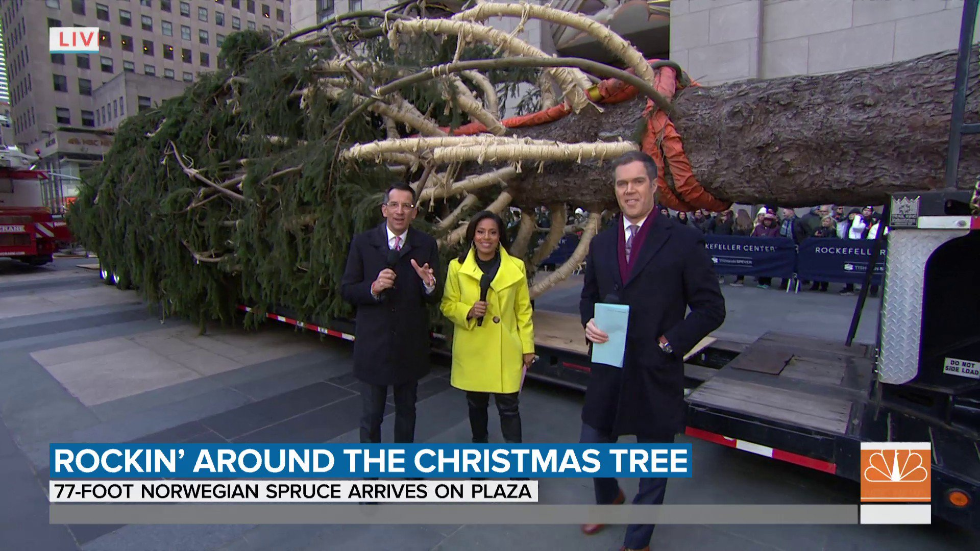 Rockefeller Center Christmas tree has arrived. The 77-foot Norway spruce was donated by Carol Schultz, who planted the tree back in 1959.