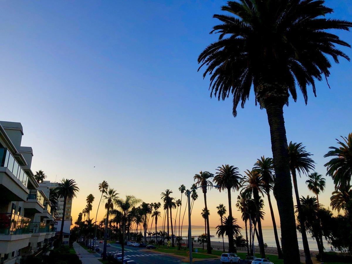 Good Morning Santa Monica! 🌴 #MyDayInLA #ILoveLA #California #SaturdayThoughts