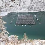 Image for the Tweet beginning: İsviçre'de Toules gölüne kurulan yüzer