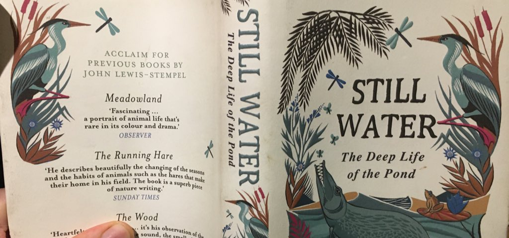 Really enjoying @JLewisStempel's Still Water, which I'm reading for my @TheTimesBooks's round up of the best nature writing of 2019 - far from being just another dose of pretty rural writing, Still Water is a call to arms. Do the ducks a favour and turn your garden into a pond 🦆
