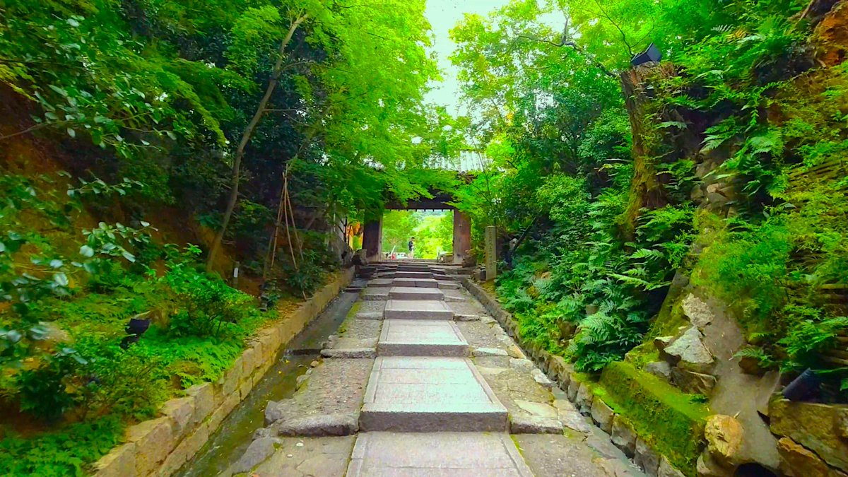 In this video we'll show you Kodaiji Temple (高台寺), Kyoto. https://youtu.be/pTSe37-SoAA #Kyoto #Gion #祇園 #京都 #Kodaiji #高台寺pic.twitter.com/r9xcc6YKSI
