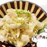 白菜がより美味しく!?「白菜だしマヨサラダ」の作り方!