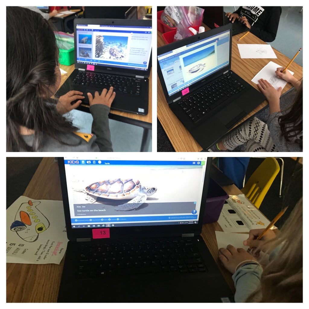 1st Graders explore turtles beyond our courtyard turtles <a target='_blank' href='http://twitter.com/CampbellAPS'>@CampbellAPS</a> <a target='_blank' href='https://t.co/1nsNGoY33M'>https://t.co/1nsNGoY33M</a>