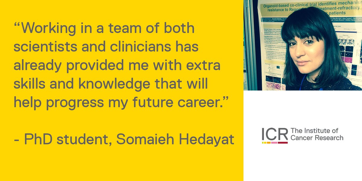 #PhD student @SomHedICR talks about working with scientists and clinicians at the ICR and her future career buff.ly/2JybUPn