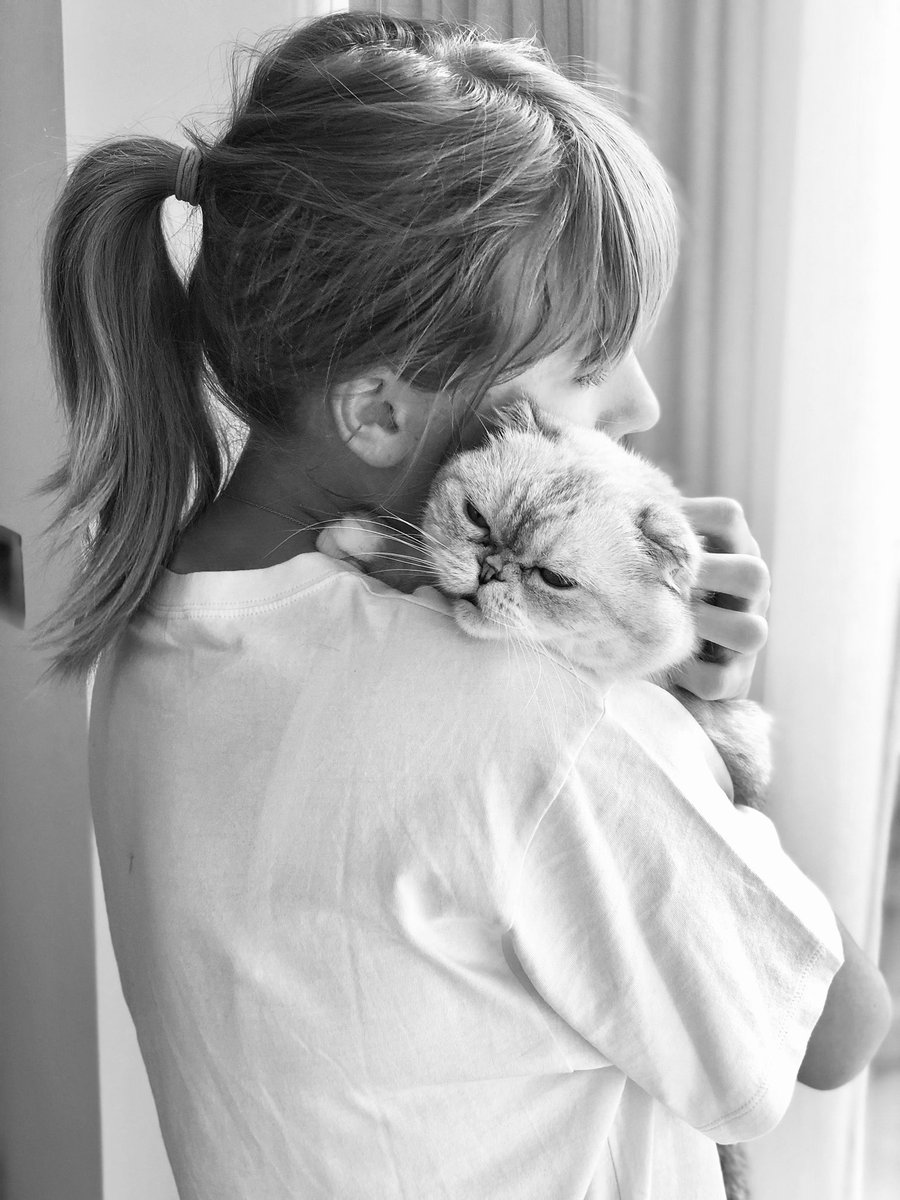 Taylor Swift On Twitter Hug Your Cat Today Or Don T If Your Cat Hates Hugs But Anyway Happy Nationalcatday From Me Olivia Meredith And Benjamin Https T Co Cqk24nbqvt