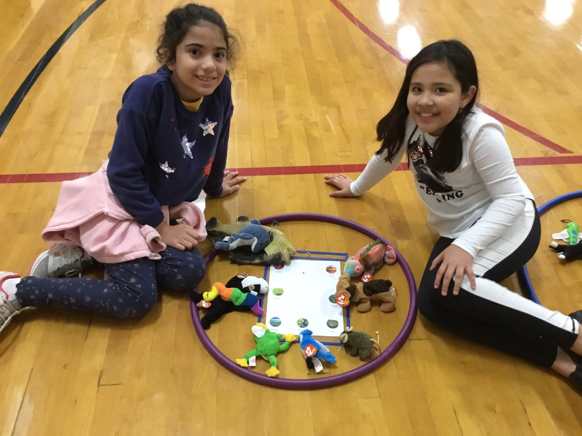 3rd grade ecosystem relay. Partners run down and get 1 animal that matches with the ecosystems they are studying in their classroom. They loved the cute animals! <a target='_blank' href='http://search.twitter.com/search?q=apsisawesome'><a target='_blank' href='https://twitter.com/hashtag/apsisawesome?src=hash'>#apsisawesome</a></a>  <a target='_blank' href='http://search.twitter.com/search?q=hfbtweets'><a target='_blank' href='https://twitter.com/hashtag/hfbtweets?src=hash'>#hfbtweets</a></a> <a target='_blank' href='https://t.co/0J0BruicaH'>https://t.co/0J0BruicaH</a>