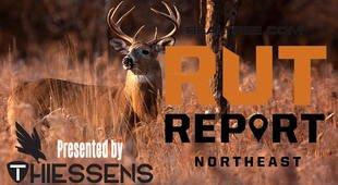 Northeast Rut Report: Deer Movement Should Spike this Week realtree.com/deer-hunting/p… #Realtree #hunting