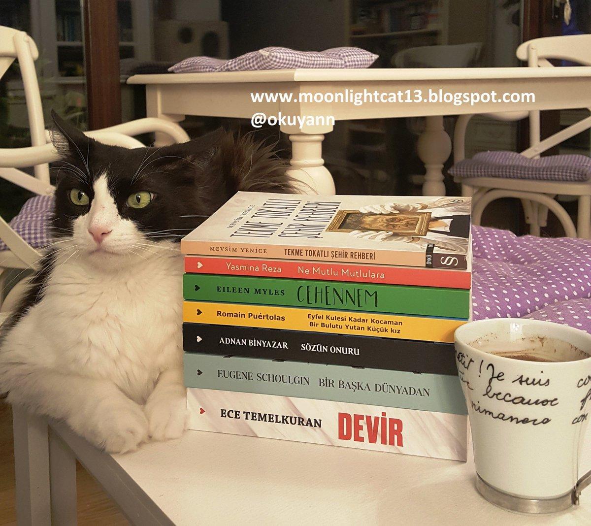 @canyayinlari @DRdunyasi  7 TL Kampanyası - tüm kitaplar blogumda:  #kitap #canyayinlari #kitapkampanya #blogger #kedi #cat