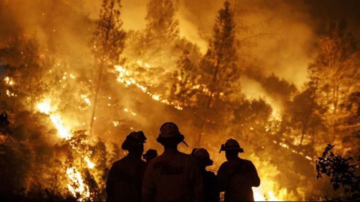 Thanks to all firefighters making sure we are all safe. Incredible work.