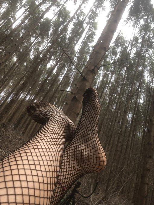 Unos pies encerados en un bosque nublado. Solo pueden liberarse con un #Quieromásdetati  #footfetısh