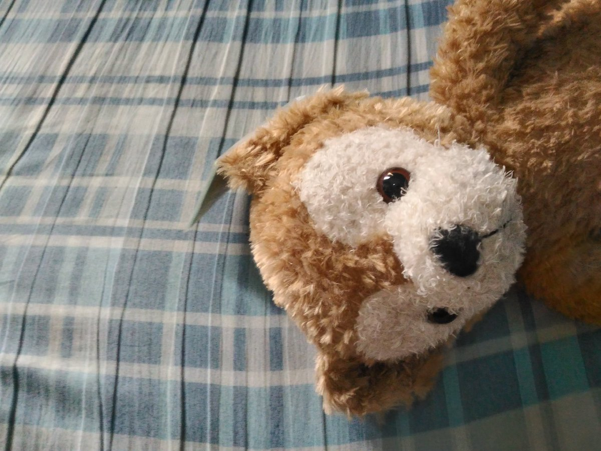 """#DuffyTheDisneyBear: """"Master does not know how to make clothing. I hear that Master somewhat knows how to sew. But making a costume is difficult!"""""""