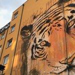 Ein Tiger für #Berlin! Streetart-Duo @Herakut macht deutlich, dass die Tiger dringend unsere Hilfe brauchen. https://t.co/0AR2BY0YV8 #StreetArt #StoppWilderei