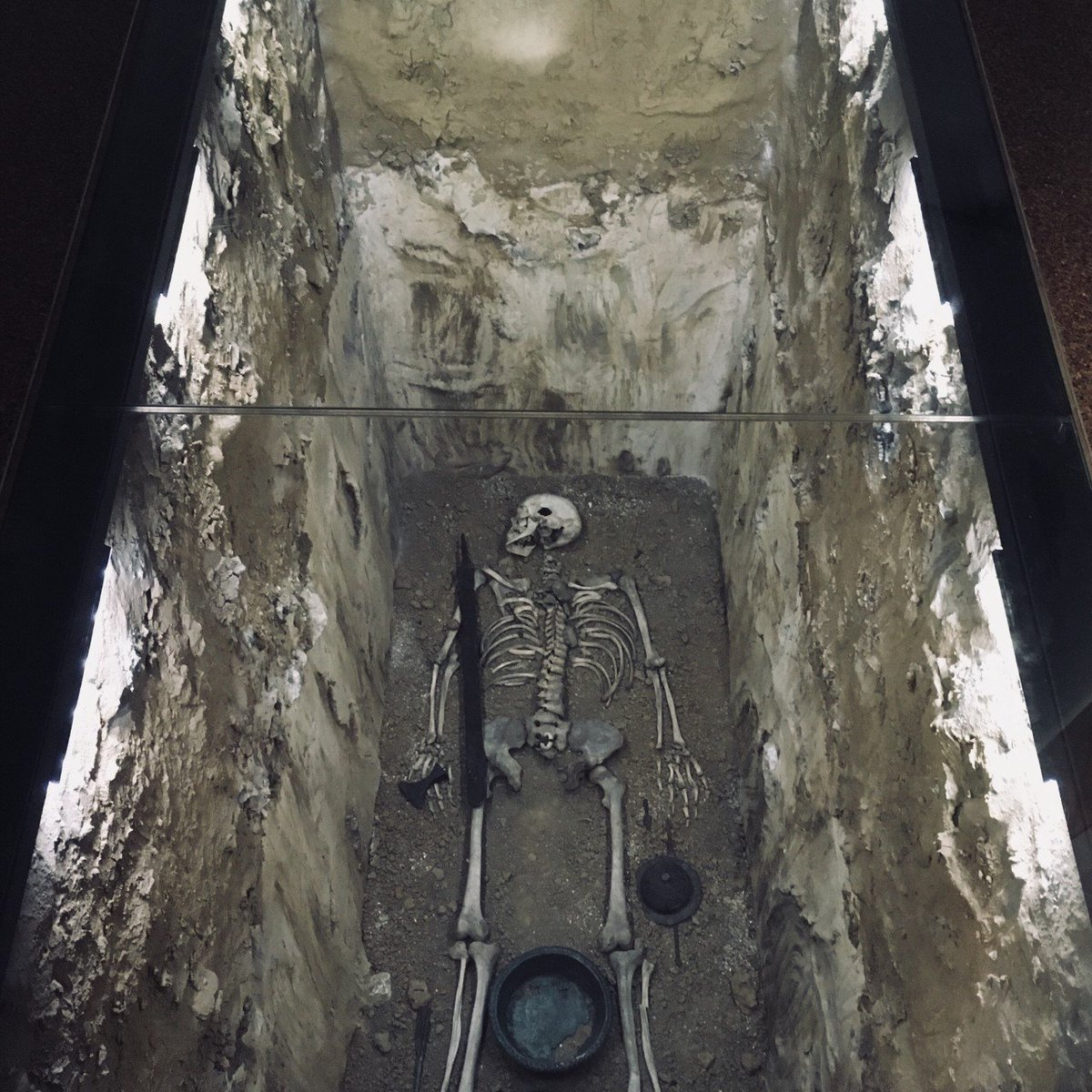 Spooky scary skeletons ...🎶  Happy Halloween ! This guy right here is only waiting for tonight to rise from the grave and celebrate...  (Currently exhibited in our Merovingian section)  #ahmbrussels #halloween #skeletons https://t.co/UXLH97T75z