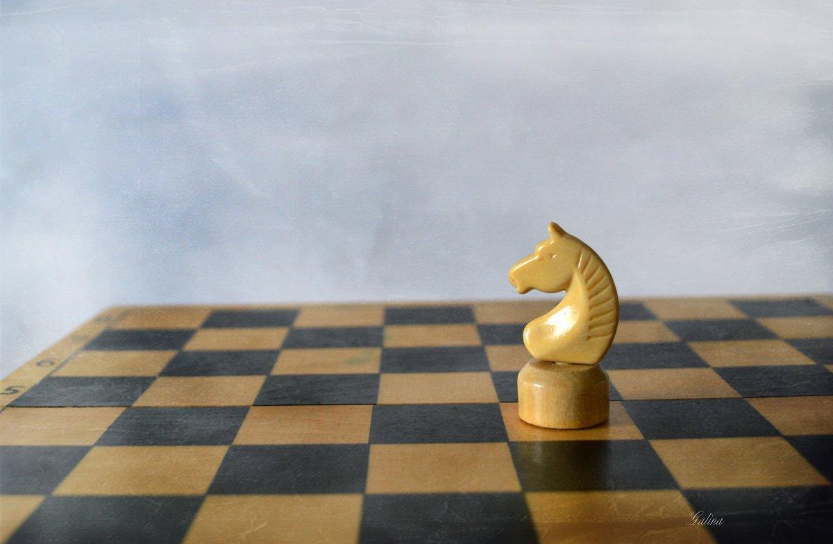 картинки ход конем шахматы опять словно
