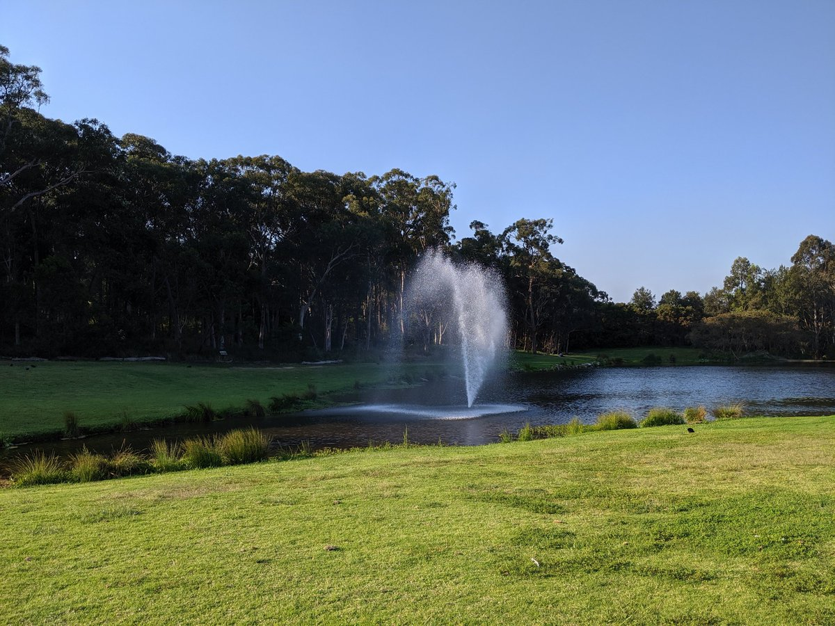 Beautiful lake on Macquarie University's campus. Lovely environs and well worth a visit.
