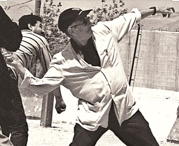 Happy Birthday to the late and great Edward Said, pictured here throwing stones at an Israeli guardhouse