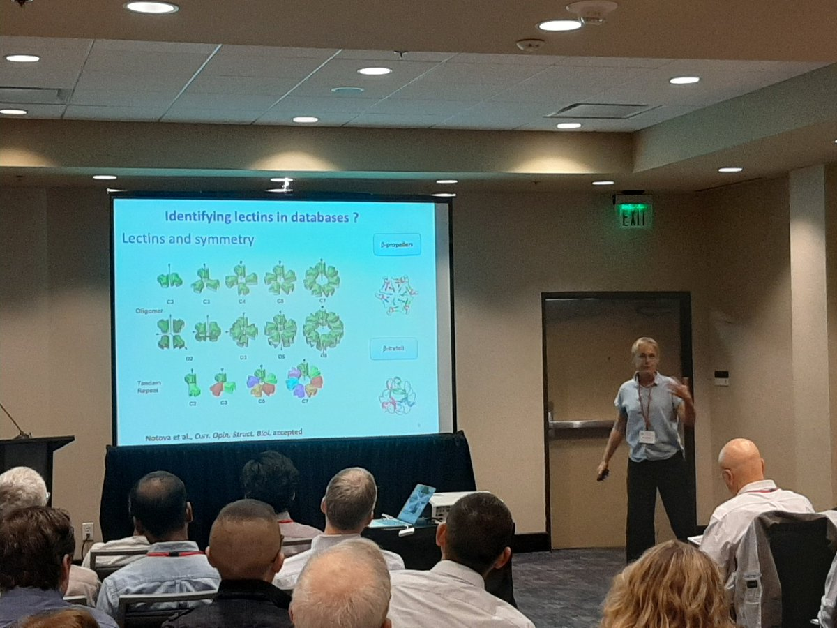 And it's a go! @AnneImberty opens the #SFGPhoenix with the great #UNILectin glycoinformatics resource, work also by @FBonnardel_BI and @GlycomicsExpasy 👏👏👏🔝🌵☀️ https://t.co/Vljy8B2uHf