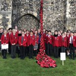 A @DoverPrep collaboration with the Senior School results in a stunning art installation to mark #RemembranceSunday 300 poppies, each representing a fallen Old Dovorian were constructed using cake cases, buttons and pipe cleaners #thinkdifferently #thinkdovercollege