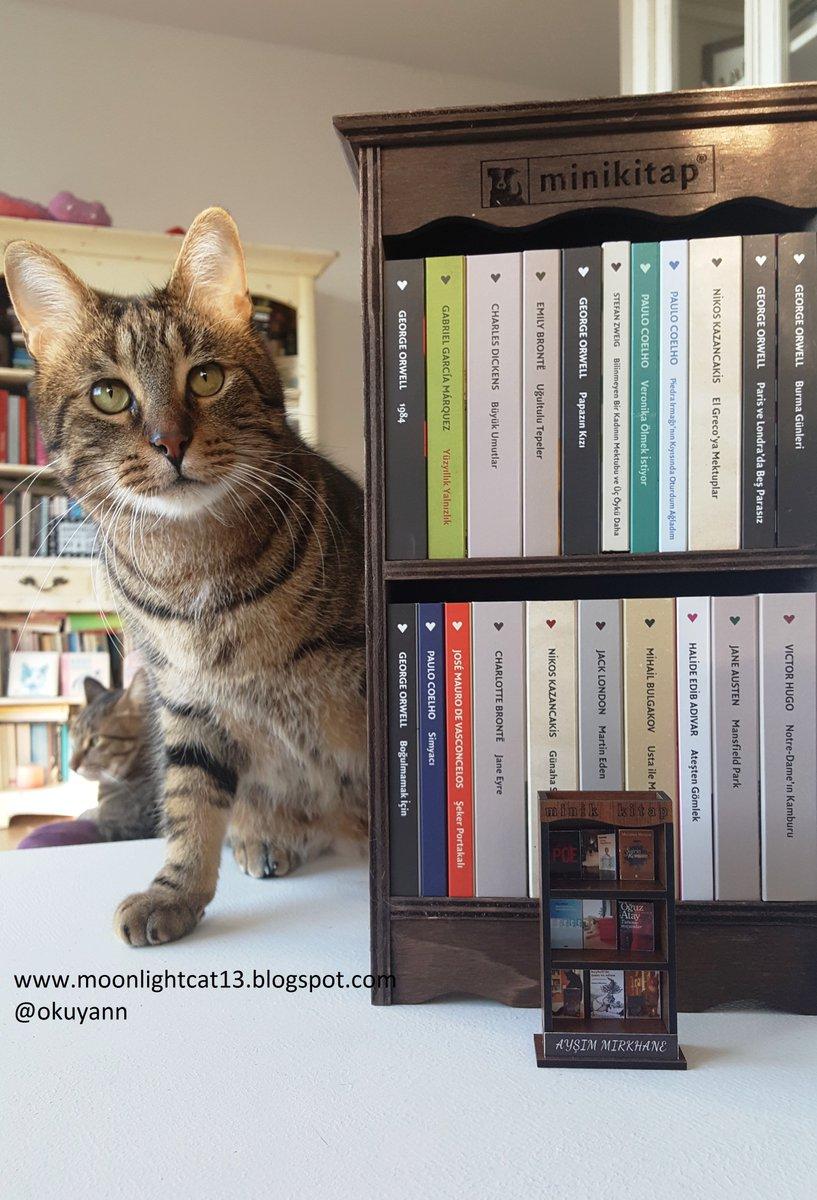 Mini Kitap - detaylar blogumda:   #minikitap #canyayinlari #kedi #kitap  #blogger #cat #cats